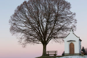 chapel with tree and bench