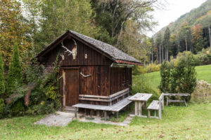 hut at the edge of the forest, meadow