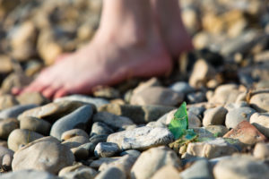shards of glass, beach, foot, gravel