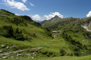 Freiburg hut, summit, Alp, meadow, sky, way