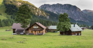 House group, Alp, trees, meadow, mountains, summits