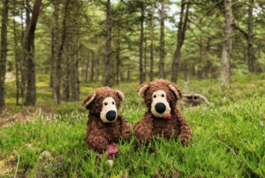 2 sitting teddy bears in the forest,