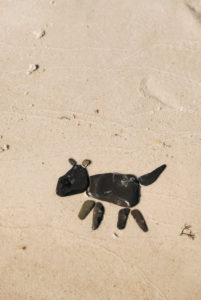 Abstract dog made of black stones on the beach,