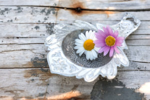 2 blossoms in old silver tea strainer on old weather-beaten wooden board