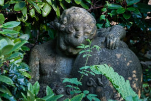 Putto surrounded of plants on graveyard ,