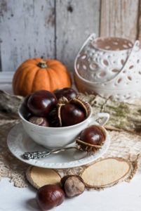 Autumn Still Life, Mug with chestnuts and decoration, in front of pumpkin and candle holders,