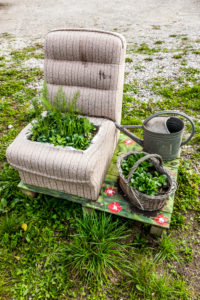 Individual herb garden