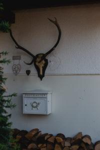 Hauseingang mit Briefkasten und Holz mit Hirschgeweih