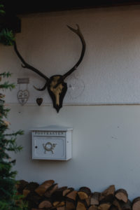 House entrance with mailbox and wood with deer antlers