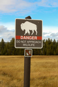Yellowstone National Park: Danger Schild, Büffel