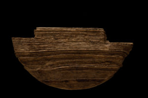 Driftwood on a black background