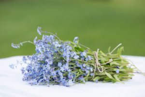 Bouquet of Forget-me-not flowers on a white table, green background