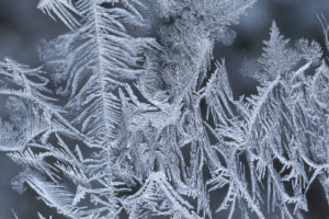 Close-up of Ice Crystals