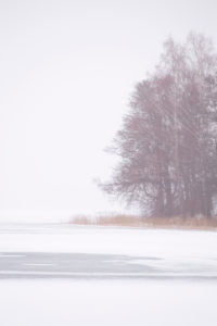 Minimal landscape, winter scenery