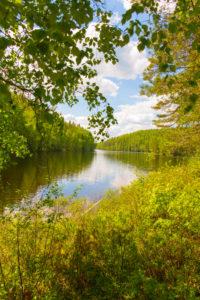 Lake Landscape, Summer scenic, Finland