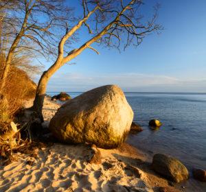 Germany, Mecklenburg-Western Pomerania, the island of Rügen, Southeast Rügen Biosphere Reserve of Rügen, peninsula Mönchgut, Großer Zicker, coastal scenery, coastal forest and erratics, sandy beach, evening light