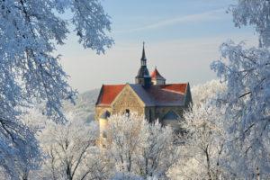Deutschland, Sachsen-Anhalt, Burgenlandkreis, Goseck, Saaletal, Schloss Goseck im Winter, Bäume mit Raureif bedeckt