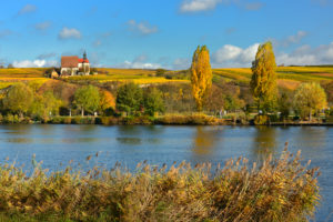 Germany, Bavaria, Franconia, Volkach, Wallfahrtskirche Maria im Weingarten (church) over the Main river, autumn