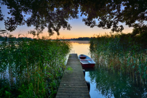 Jetty with rowing boat in the reeds, morning light, Lake Großer Müllroser See, Müllrose, Schlaubetal Nature Park, Brandenburg, Germany