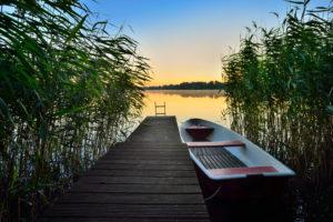 Steg mit Ruderboot im Schilf, Morgenlicht, Großer Müllroser See, Müllrose, Naturpark Schlaubetal, Brandenburg, Deutschland