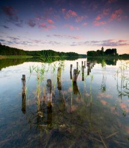 Sonnenuntergang am Gabelsee, Rest eines Steges und Schilfhalme, Falkenhagen (Mark), Brandenburg, Deutschland