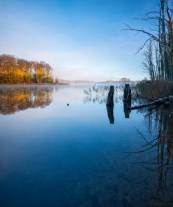 Deutschland, Mecklenburg-Vorpommern, Müritz-Nationalpark, Teilgebiet Serrahn, Schweingartensee im Herbst mit Morgennebel, bunter Wald spiegelt sich