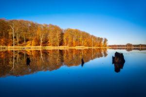 Deutschland, Mecklenburg-Vorpommern, Müritz-Nationalpark, Teilgebiet Serrahn, Schweingartensee im Herbst, bunter Wald spiegelt sich