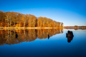 Germany, Mecklenburg-West Pomerania, Müritz National Park, Serrahn, Schweingartensee in autumn, colorful forest reflected