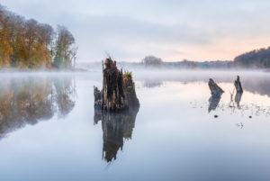 Deutschland, Mecklenburg-Vorpommern, Müritz-Nationalpark, Teilgebiet Serrahn, Morgennebel am Schweingartensee im Herbst