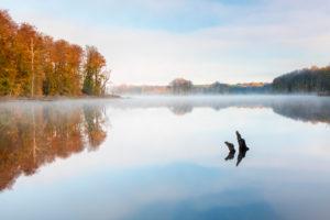 Deutschland, Mecklenburg-Vorpommern, Müritz-Nationalpark, Teilgebiet Serrahn, Morgennebel am Schweingartensee im Herbst, bunter Wald spiegelt sich