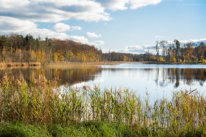 Deutschland, Mecklenburg-Vorpommern, Müritz-Nationalpark, Teilgebiet Serrahn, Schweingartensee im Herbst