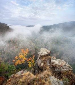 Deutschland, Sachsen-Anhalt, Thale, Harz, Aussicht von der Roßtrappe im Herbst, Morgennebel im Bodetal