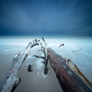 Entwurzelte Bäume am Strand der Ostsee, dunkle Wolken, Langzeitbelichtung, Halbinsel Fischland-Darß-Zingst, Nationalpark Vorpommersche Boddenlandschaft, Mecklenburg-Vorpommern, Deutschland