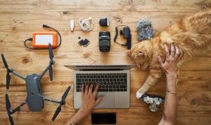 Person sitting at table with photografic equipment and ginger cat, using laptop, overhead view