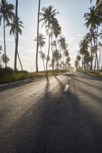 Ghana, Sun shining over palm trees along empty asphalt road