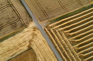 Germany, Bavaria, Drone view of country road cutting through yellow countryside fields in summer
