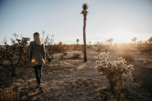 Back view of woman walking in the desert at sunset, Joshua Tree, USA