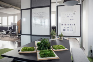 Whiteboard and plants on table in office