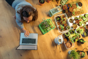 Young woman using laptop on wooden floor next to plants