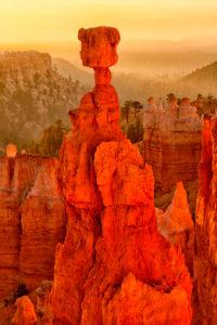 USA, Utah, Rock hoodoo in Bryce Canyon at summer dawn