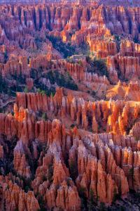 USA, Utah, Scenic view of Bryce Canyon at summer dawn