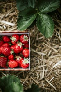 Ripe strawberries in basket on field