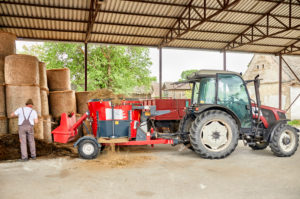Farmer putting hay in agricultural machinery while standing at barn