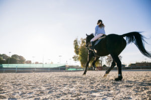 Rear view of girl riding horse on training ground at ranch during sunny day
