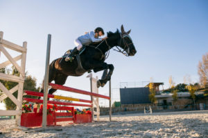 Low angle view of jockey riding horse over hurdle on training ground against clear sky