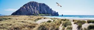 Kalifornien, Pazifikküste, Morro Bay, Morro Rock, Dünen