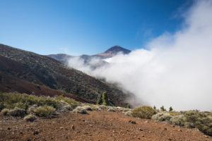 Raising fog at the La Tarta viewpoint with a view of Pico del Teide (3718 m), El Teide National Park, UNESCO World Heritage, Tenerife, Canary Islands, Spain