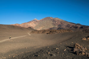 Hike in the volcanic landscape around the Montana de la Botija with a view of the volcanoes Pico del Teide (3718 m) and Pico Viejo (3135 m), El Teide National Park, UNESCO World Heritage, Tenerife, Canary Islands, Spain