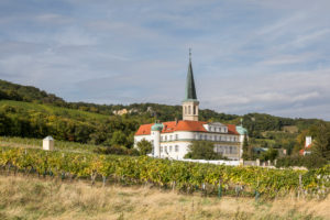 The Gumpoldskirchen Castle (accommodation and seminar hotel) with the parish church of St. Michael surrounded by vineyards, Gumpoldskirchen, Lower Austria, Austria