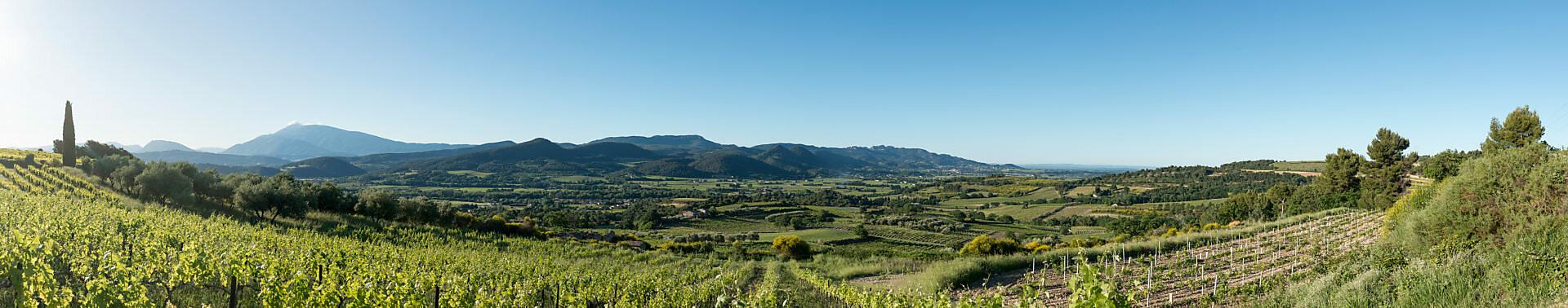 Roaix, Vaucluse, Provence, Provence-Alpes-Côte d'Azur, France, vineyards with Roaix, Arondissement Carpentras, in the background of the Mont Ventoux,